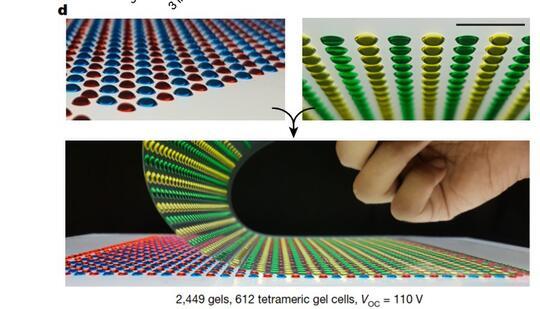 Terinspirasi Belut Listrik, Peneliti ini Mengembangkan Teknologi Bio-Battery