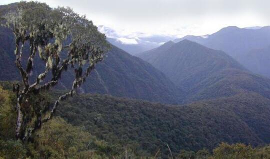 Fakta-fakta terbaru seputar peradaban kuno di Peru. Peneliti masuk!