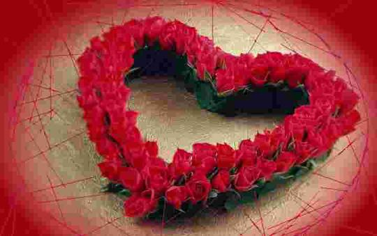 Bunga Mawar Lukisan Hati Yang Luka Kaskus
