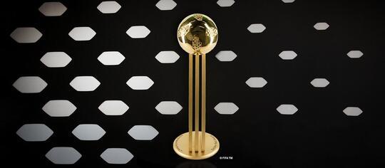Beberapa Penghargaan Yang Diberikan FIFA