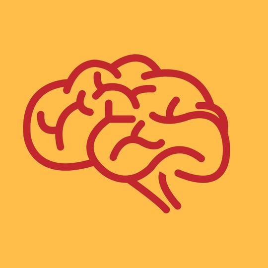 8 dari 10 Anak Indonesia Kurang DHA sebagai Nutrisi Otak!