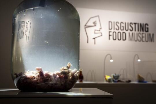 Makanan Paling Menjijikkan yang Dipamerkan di Disgusting Food Museum