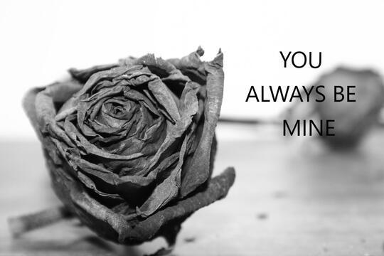 You Always Be Mine (++) [True Story]