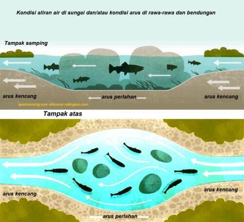 Angler Mania, Mata Kail Dan Keluarga. Apa Yang Agan Pikirkan?