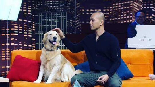 3 Channel YouTube Pelatih Anjing Favorit Ane