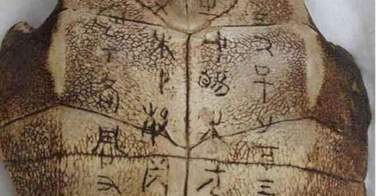 Misteri Ramalan di Tempurung Kura-Kura yang Bikin Pusing Para Peneliti