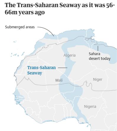 Gurun Sahara dulu Kaya Air dan dihuni Hewan Raksasa
