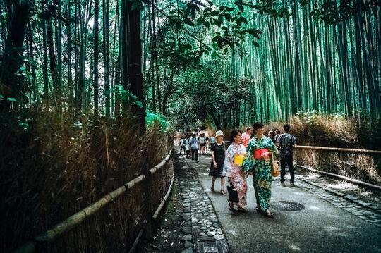 Ini Tips Buat Agan yang Mau Solo Traveling ke Jepang