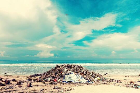 Sampah Plastik dan Dampaknya Bagi Kehidupan Kita