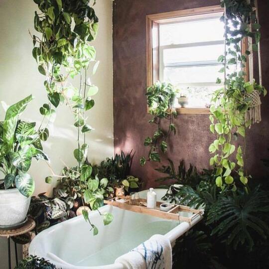 6 Inspirasi Bathtub Kekinian, Nomor Lima Yakin Nggak Mau Agan Coba?