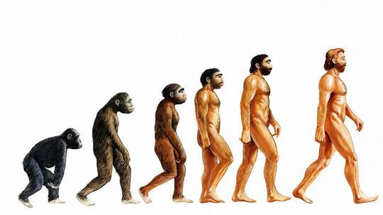 Teori Evolusi Tidak Pernah Mengatakan Manusia Adalah Keturunan Kera
