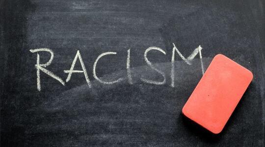 Berhenti Rasis, Bodoh Jangan Dipelihara