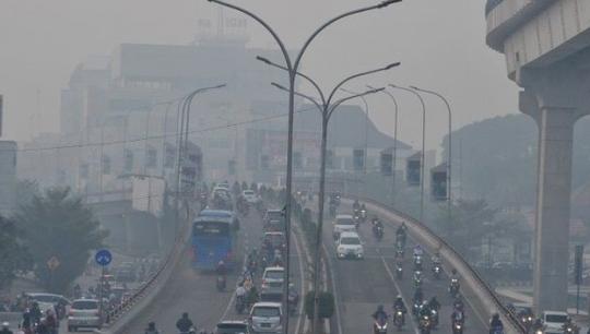 Calon Ibu Kota Indonesia Mulai Dikepung Kabut Asap