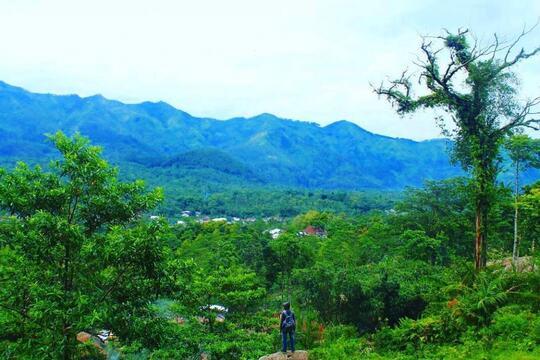Tujuh Destinasi Wisata yang Menarik di Kota Pemalang
