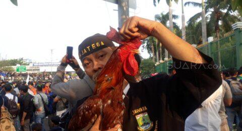 Ikut Aksi Mahasiswa, Jawara Banten Bawa Ayam Jago Tertancap Paku 12 Cm