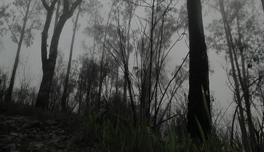 Gadis Pucat Di Gunung
