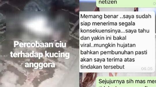 Setelah Viral Kucing Dicekoki Ciu, Pelaku Membuat Video Ungkap Fakta Sebenarnya!