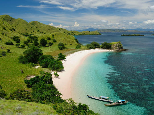 Paket Wisata Mahal? Kartu Member Premium Berlaku Bagi Turis Pulau Komodo