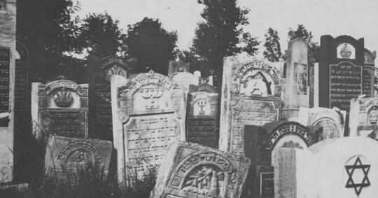 tanah-pemakaman-zombie-apocalypse-survival