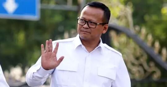 menteri-kkp-edhy-prabowo-dan-skenario-monopoli-di-aturan-ekspor-lobster