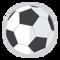 Soccer & Futsal Room